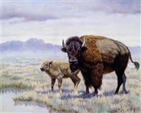 buffalo watering hole by gregory perillo
