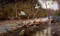 egrets paradise by gregory perillo