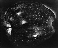 galaxy apple, new york by paul caponigro
