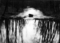 reflecting stream, redding, connecticut by paul caponigro
