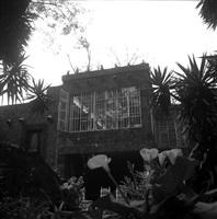 casa azul, coyoacàn, méxico by leo matiz