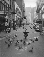 little girl with pigeons, maiden lane, san francisco by leo holub
