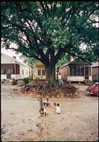 children at play, shady grove, alabama by gordon parks