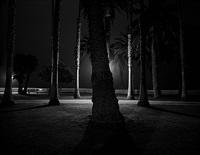 palisades park by robert von sternberg