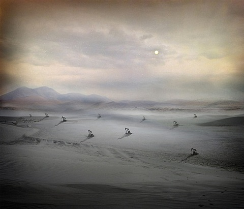 migration by suzanne moxhay