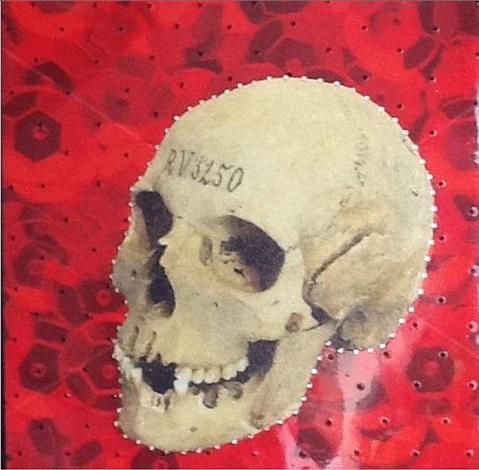 red skull by elise black