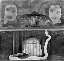 caged by roger ballen