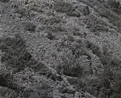 arizona landscape (blood basin) by frederick sommer