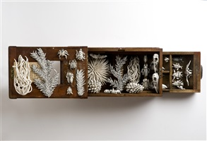 nature box by katharine morling