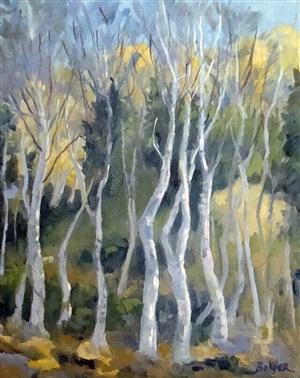 bar harbor birch trees no. 1 by gary bolyer