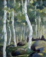 bar harbor birch trees no. 2 by gary bolyer