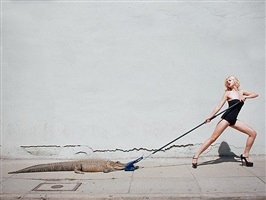birkin tug of war by tyler shields