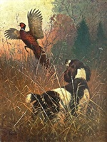 springer spaniel flushing a pheasant by lynn bogue hunt