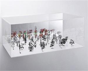 flowerbox 3 by zadok ben david