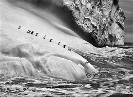 chinstrap penguins on an iceberg, between zavodovski and visokoi islands. south sandwich islands. by sebastião salgado