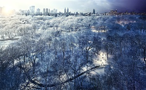 day to night, central park snow by stephen wilkes