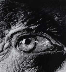 eye #8 by sebastiaan bremer