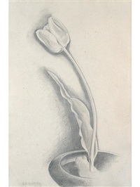 tulip by george copeland ault