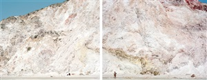 firiplaka red yellow diptych #4550-51 by massimo vitali