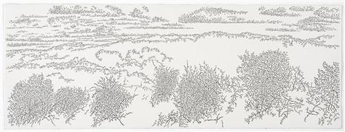 kennemer dunes, grote vlak, late summer by jonathan bragdon