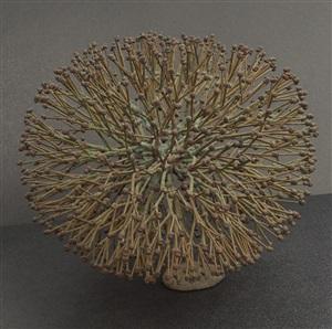 bush form by harry bertoia