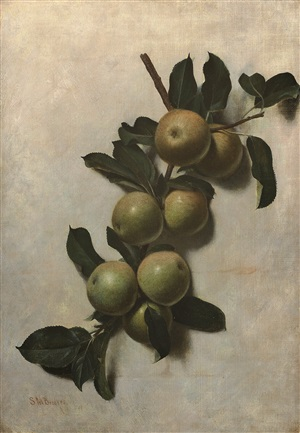 apples by samuel marsden brookes