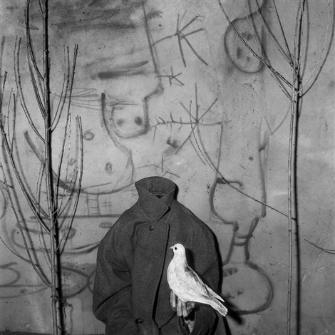 headless (from asylum series) by roger ballen