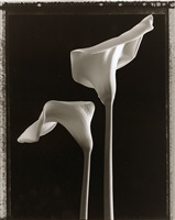 two callas by tom baril
