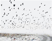 dump (near aiud, west romania) by tamas dezso