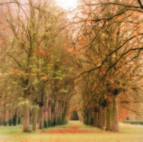 parc de sceaux, france by lynn geesaman