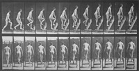 ascending a stepladder by eadweard muybridge