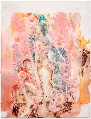 untitled (xii/17/92), from the pilchuck series by nancy graves