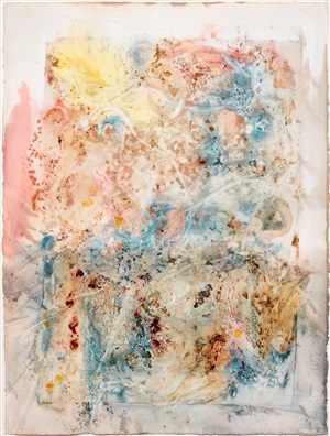 untitled (xii/28/92), from the pilchuck series by nancy graves
