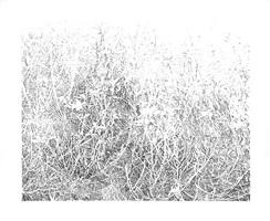 landschaft 7 by evelina cajacob