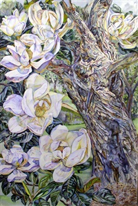 magnolia by patricia tobacco forrester
