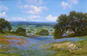 distant texas hills by william a. slaughter