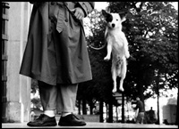 paris, france, 1989 by elliott erwitt