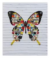 papillion en fleur 3 by james verbicky