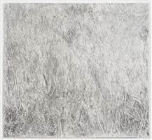 grass by scott wolniak