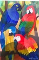 macaws by senaka senanayake