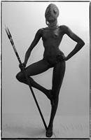 flamingo spear by guy le baube