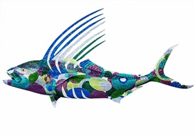 roosterfish by kevin mchugh