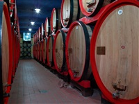 tradition. winery by liu bolin