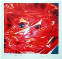 gift wrapped doll by james rosenquist