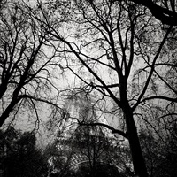 la tour eiffel la nuit, paris, france by josef hoflehner