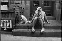 new york city, 2000 by elliott erwitt