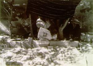 trampa puesta/placed trap (36728) by manuel alvarez bravo