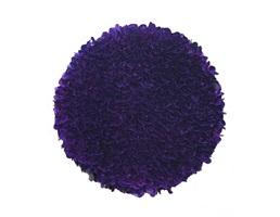 purple circle by zhuang hong yi