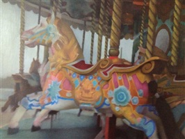 the carousel by fedele spadafora