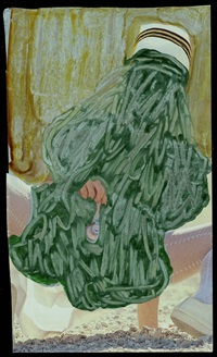 green nurse by beverly semmes